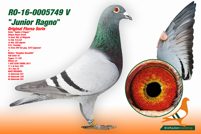 RO-16-0005749VDint.jpg - 361,50 kB