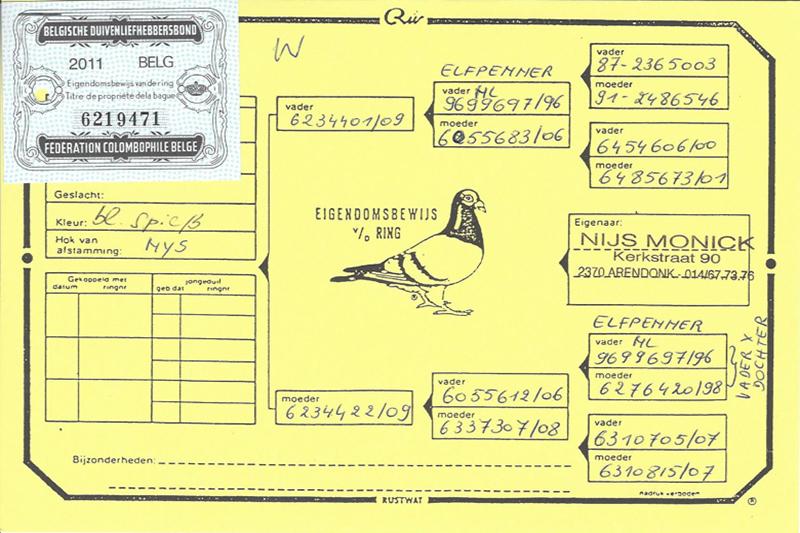B-11-6219471WAbstint.jpg - 384,48 kB