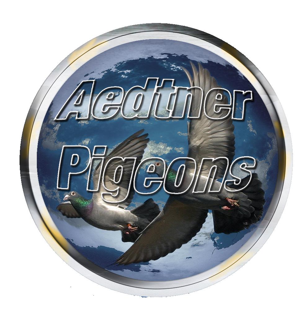 AedtnerPigeonsLogon.png - 1,26 MB