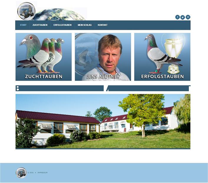 Aedtner Pigeons